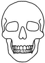 Clipart skull basic. Free easy cliparts download