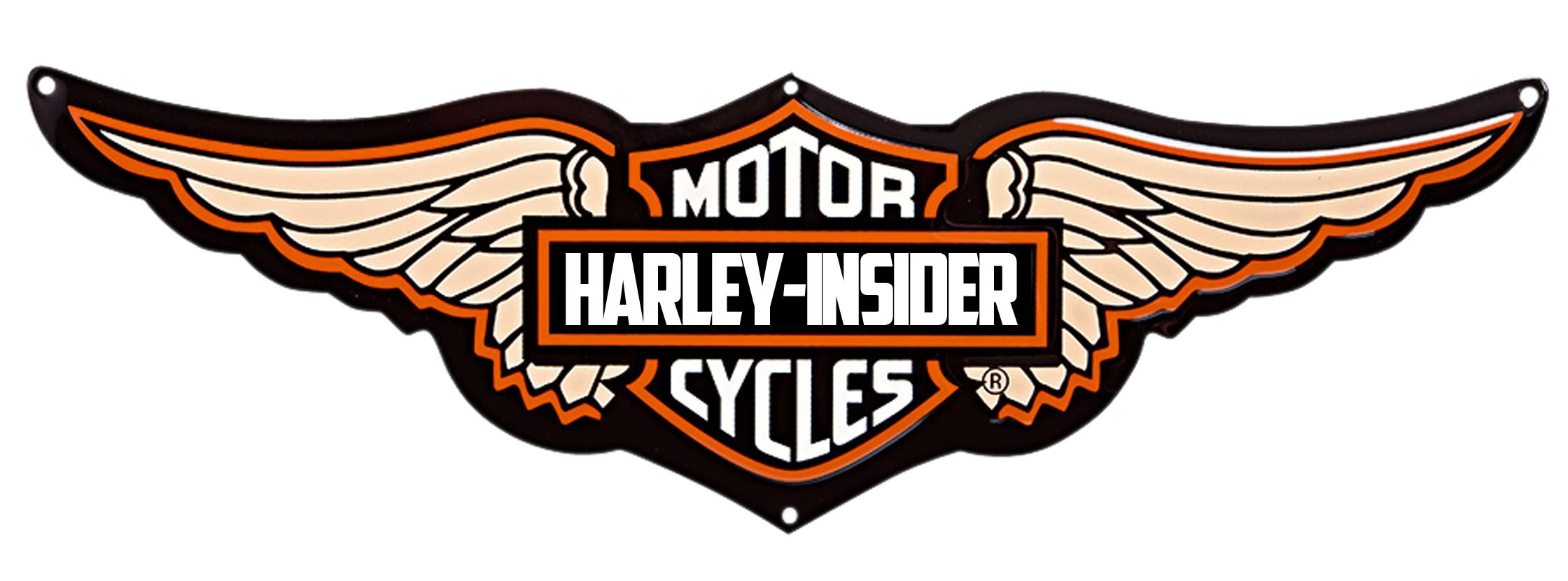 Motorcycle clipart logo. Harley davidson skull pencil
