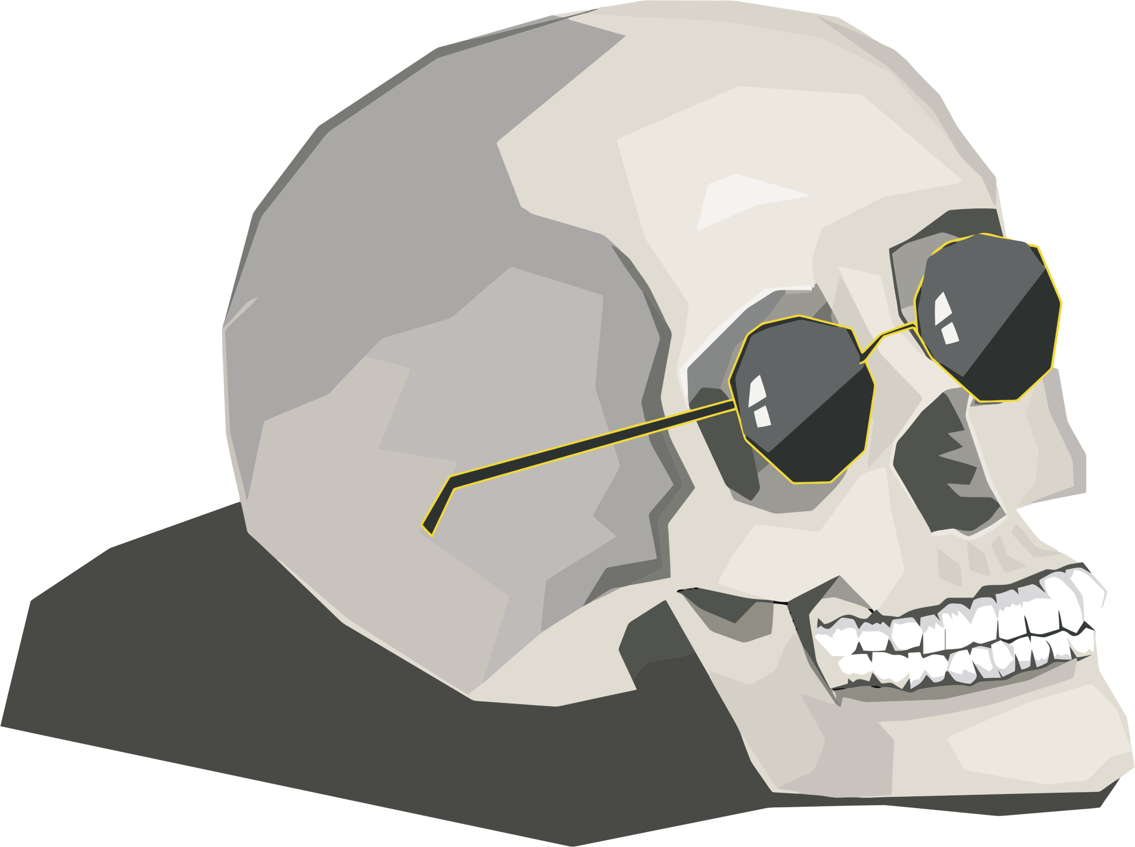 Skull wearing big image. Clipart sunglasses colored
