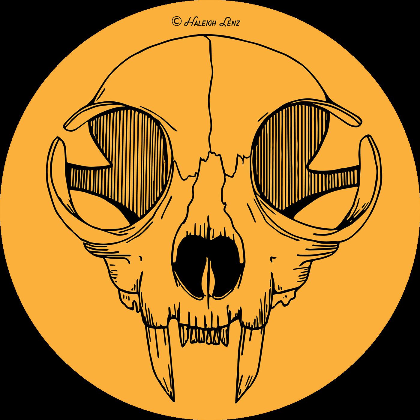 Cat illustration on behance. Skull vector png