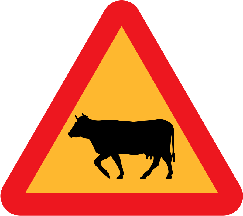 Driving clipart cute. Cow animations free graphics