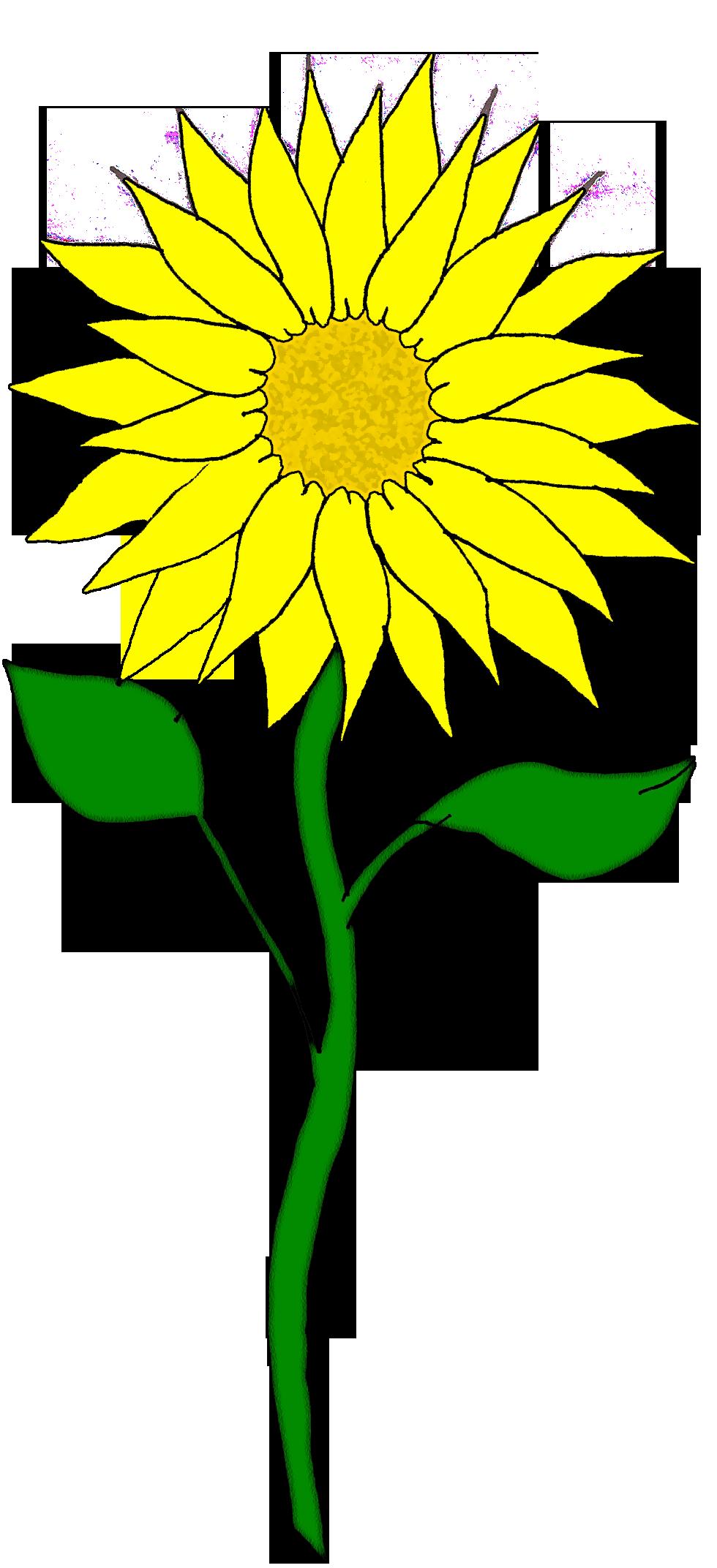 Tree clipart sunflower. Panda free images sunflowerclipart