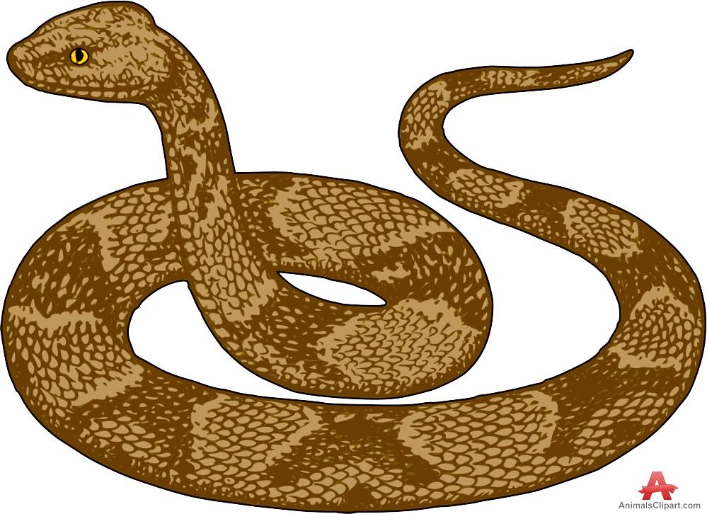 Clip art library . Snake clipart brown snake
