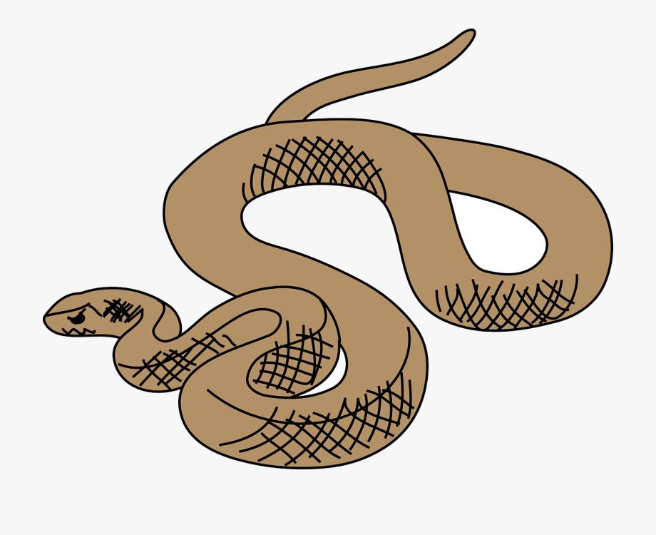 Snake clipart brown snake. Tree clip art