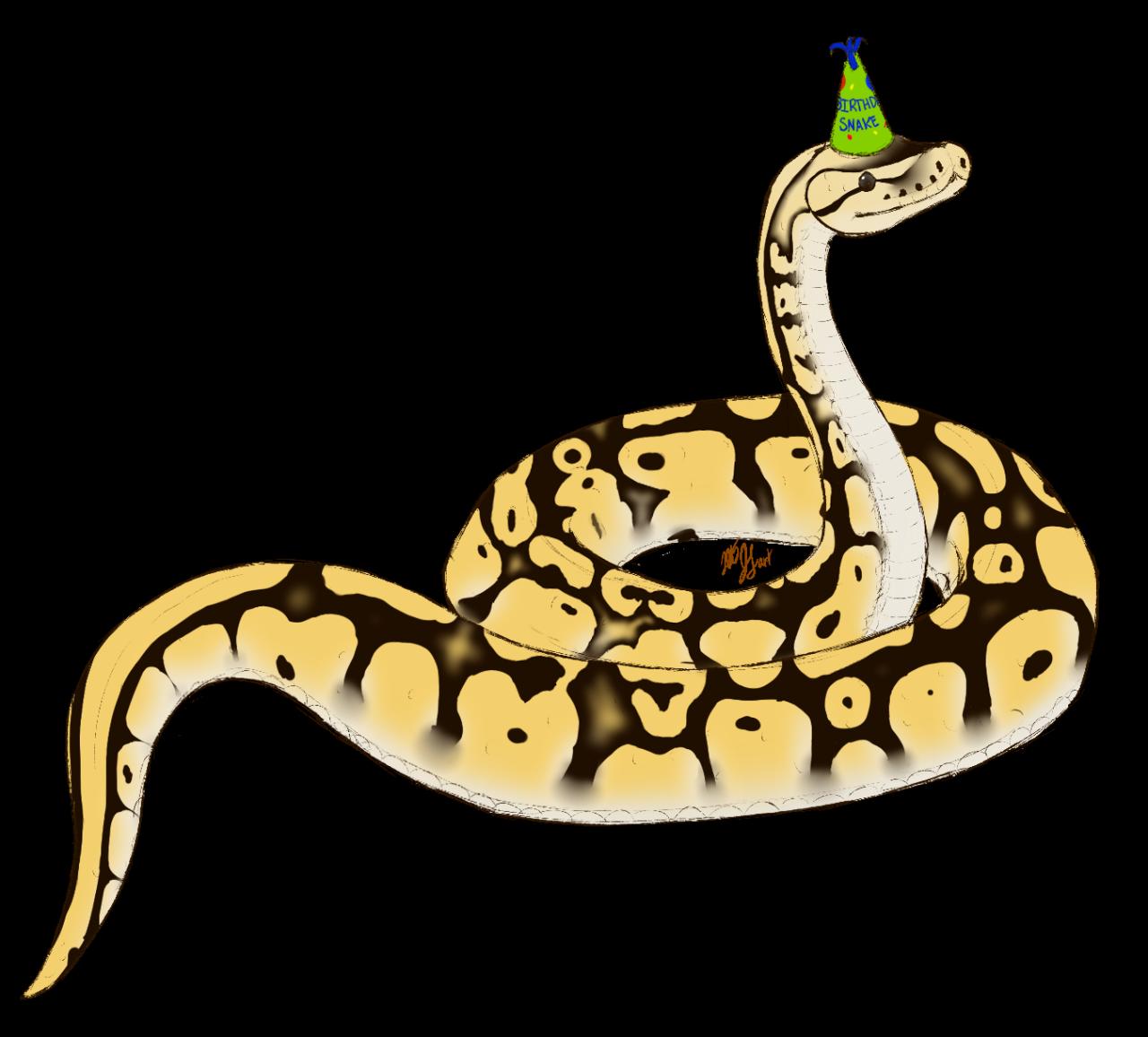 Clipart snake family. Mangotheleo wilysnakepascal here is