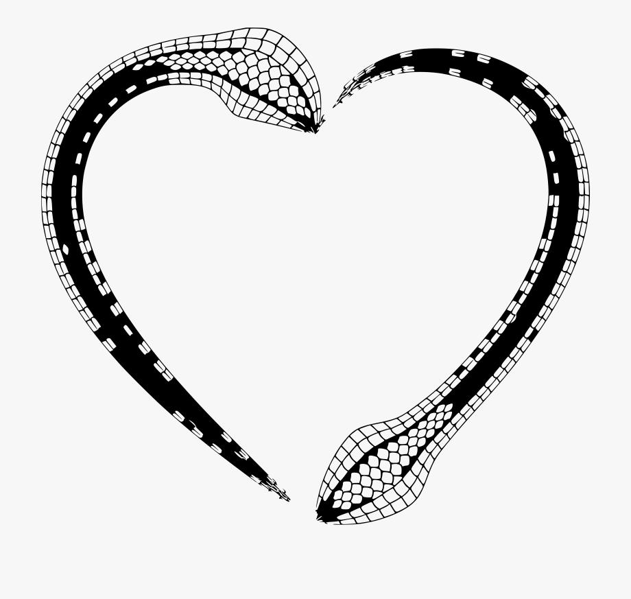 Snakeskin drawing python skin. Snake clipart frame