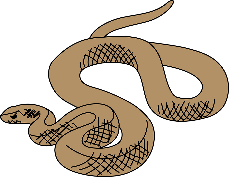 collection of brown. Clipart snake gopher snake