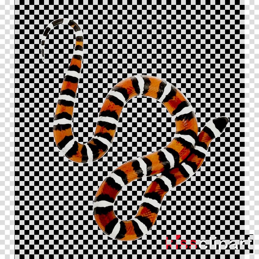 Cartoon transparent clip art. Snake clipart king snake