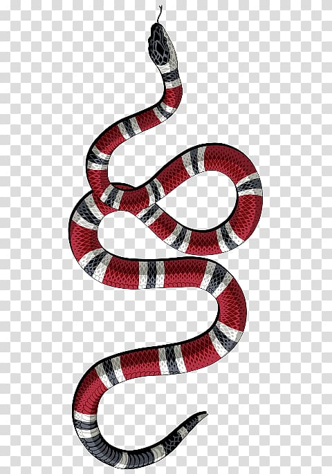 Clipart snake king snake. Red white and black