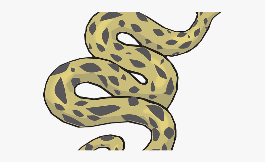 Snake clipart anaconda. Common of python