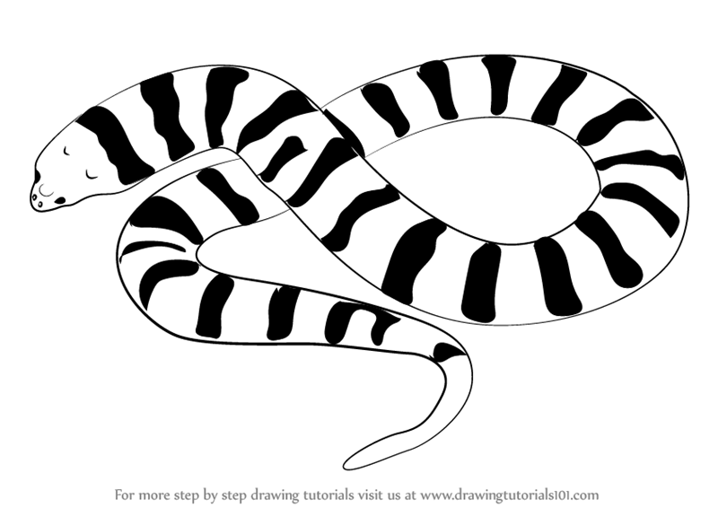 Learn how to draw. Clipart snake tiger snake
