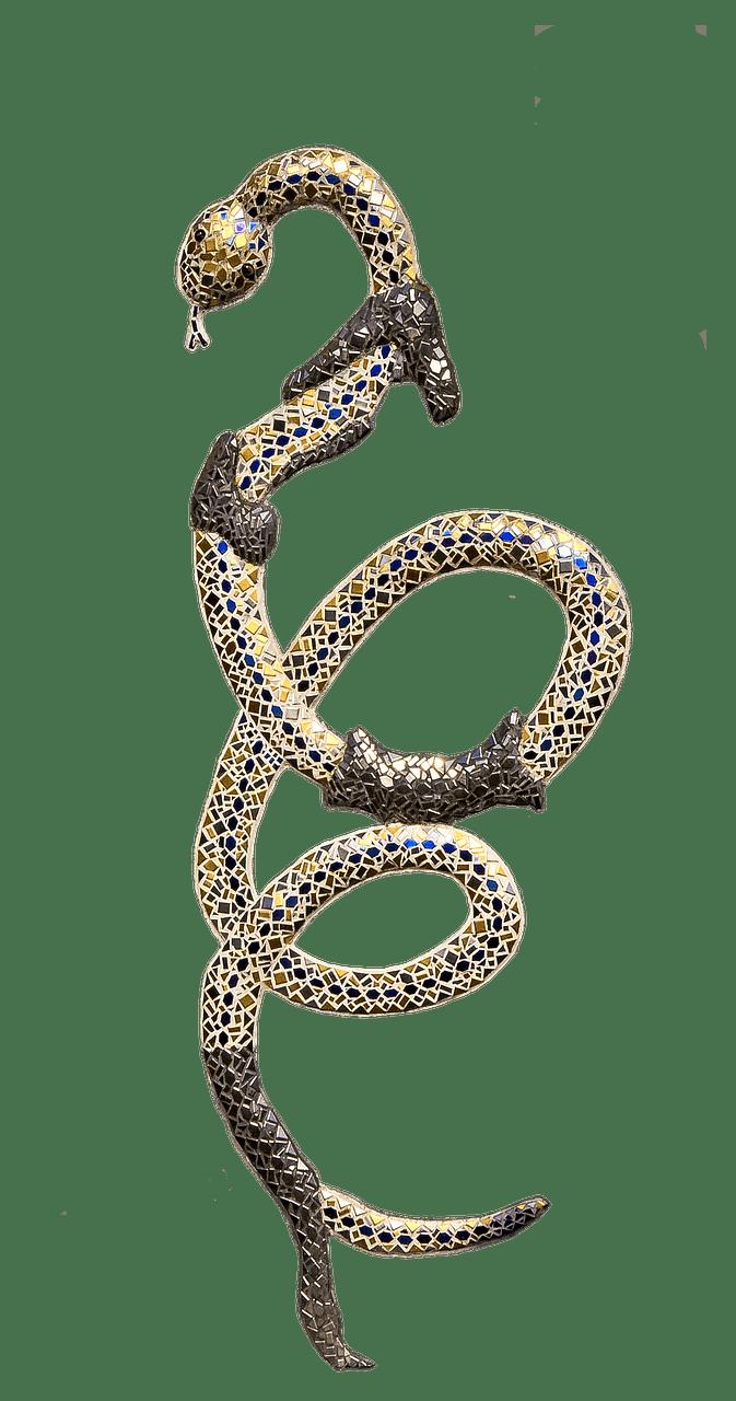 Snake shedding skin transparent. Cobra clipart anaconda