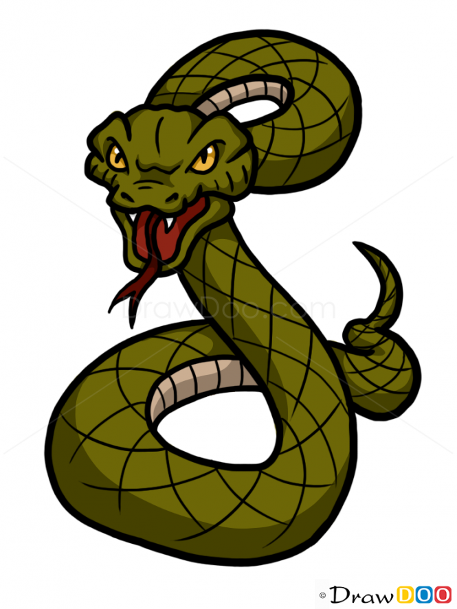 Clipart snake wild animal. How to draw a