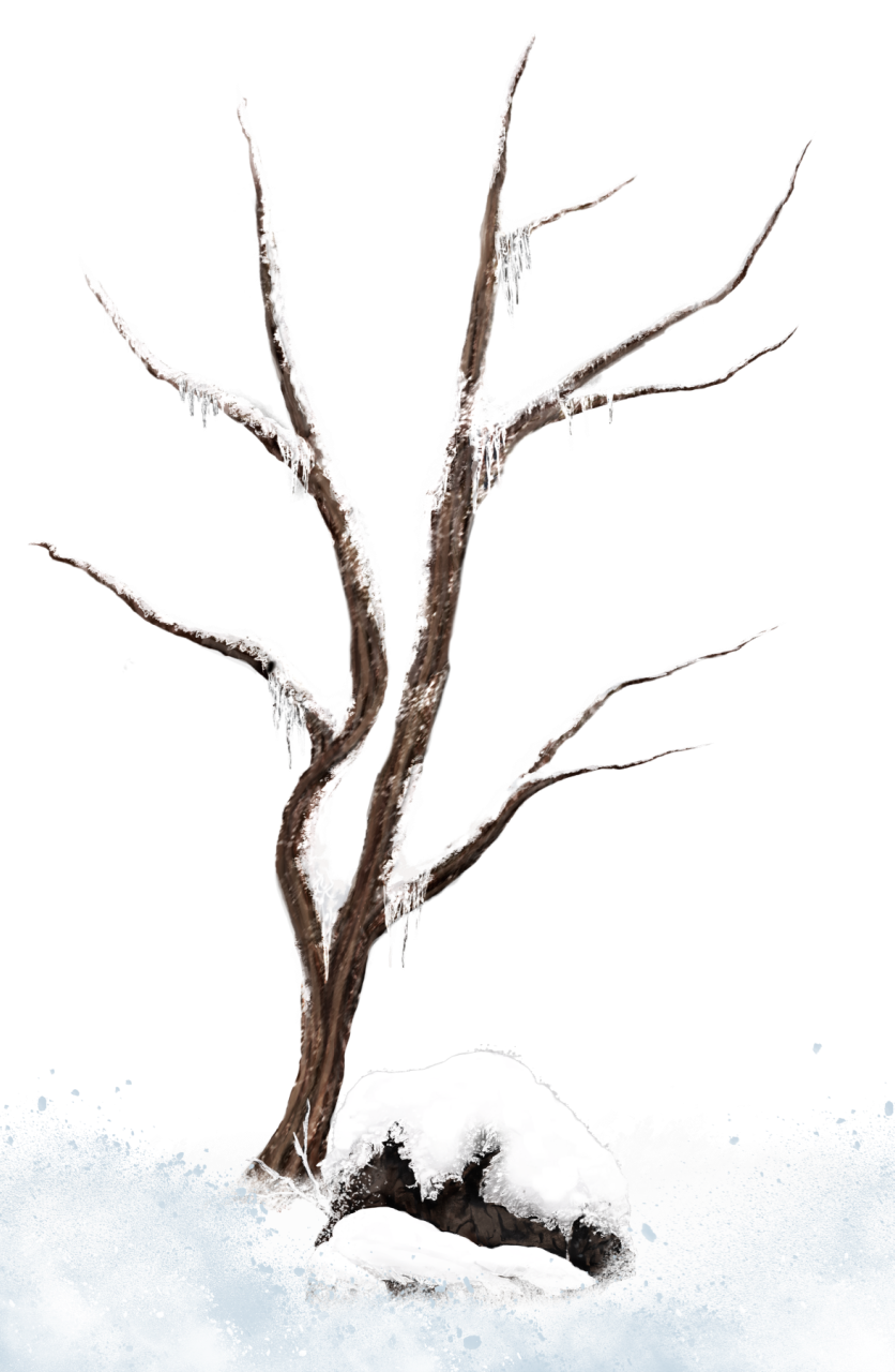 Clipart winter branch. Brown snowy tree png