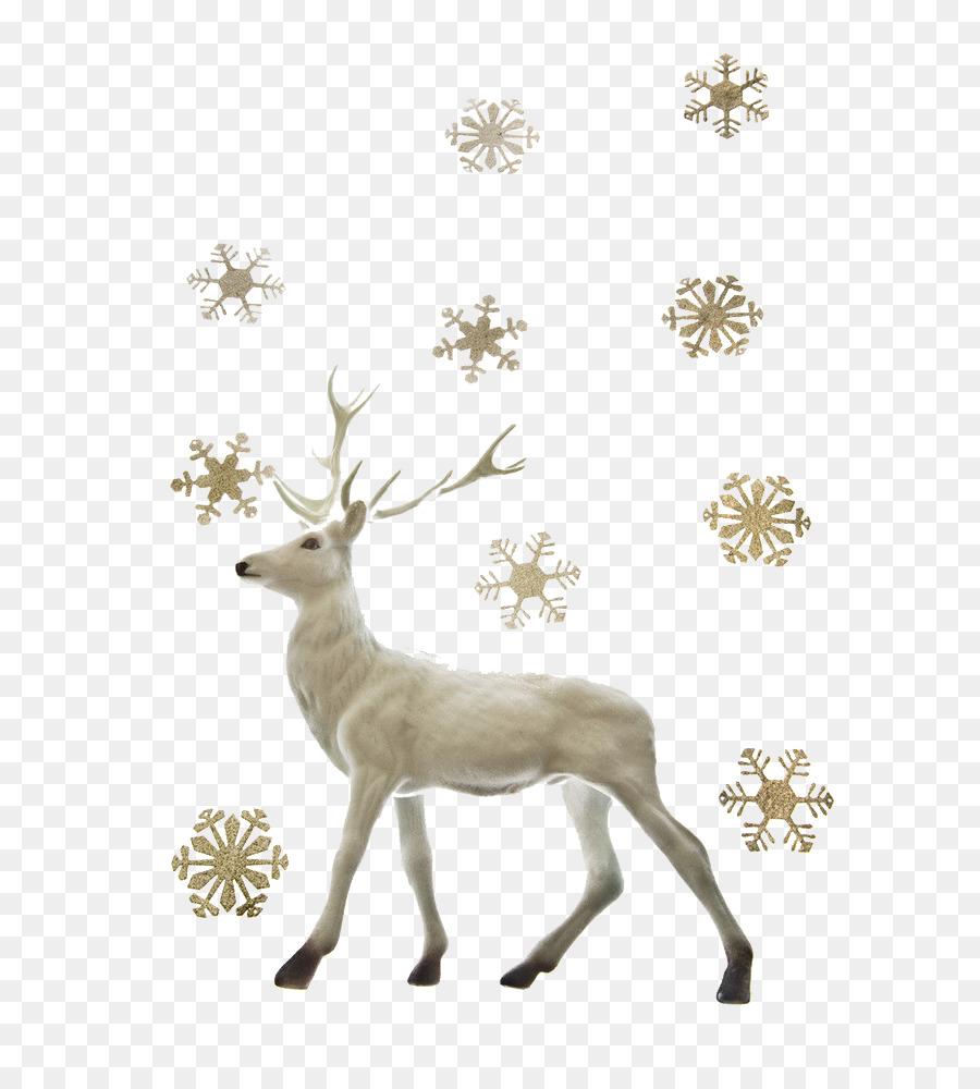 Deer clipart snow. X free clip art
