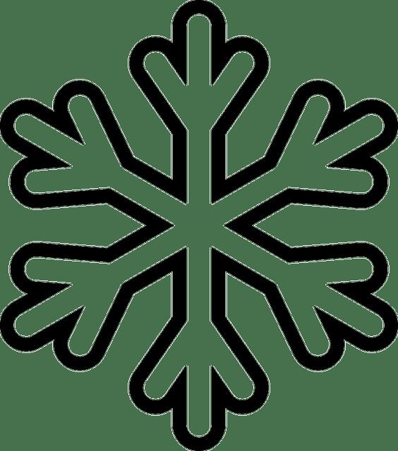 Snow snowflake