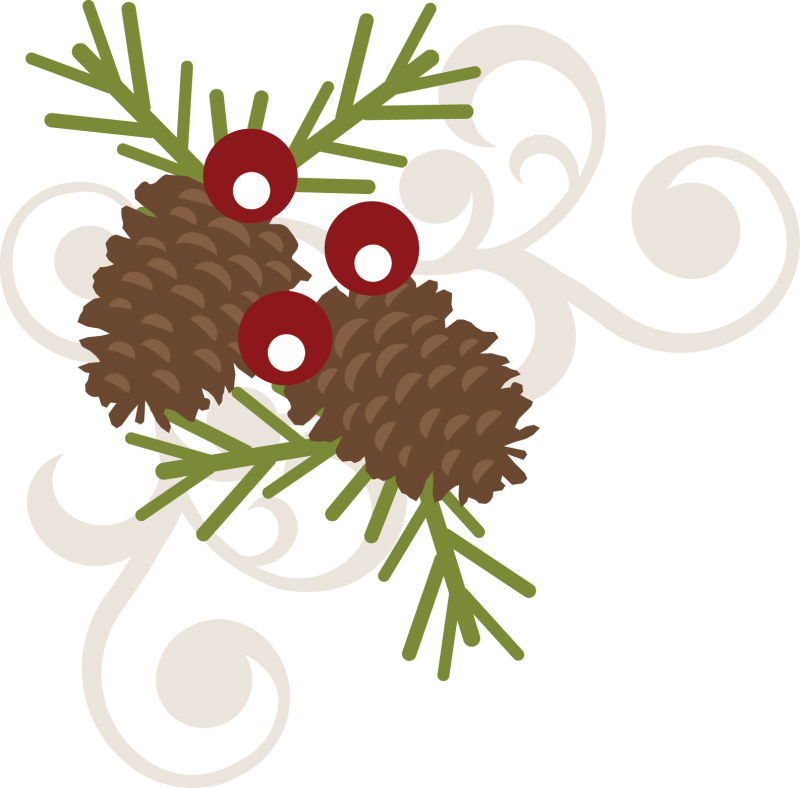 pinecone clipart berry