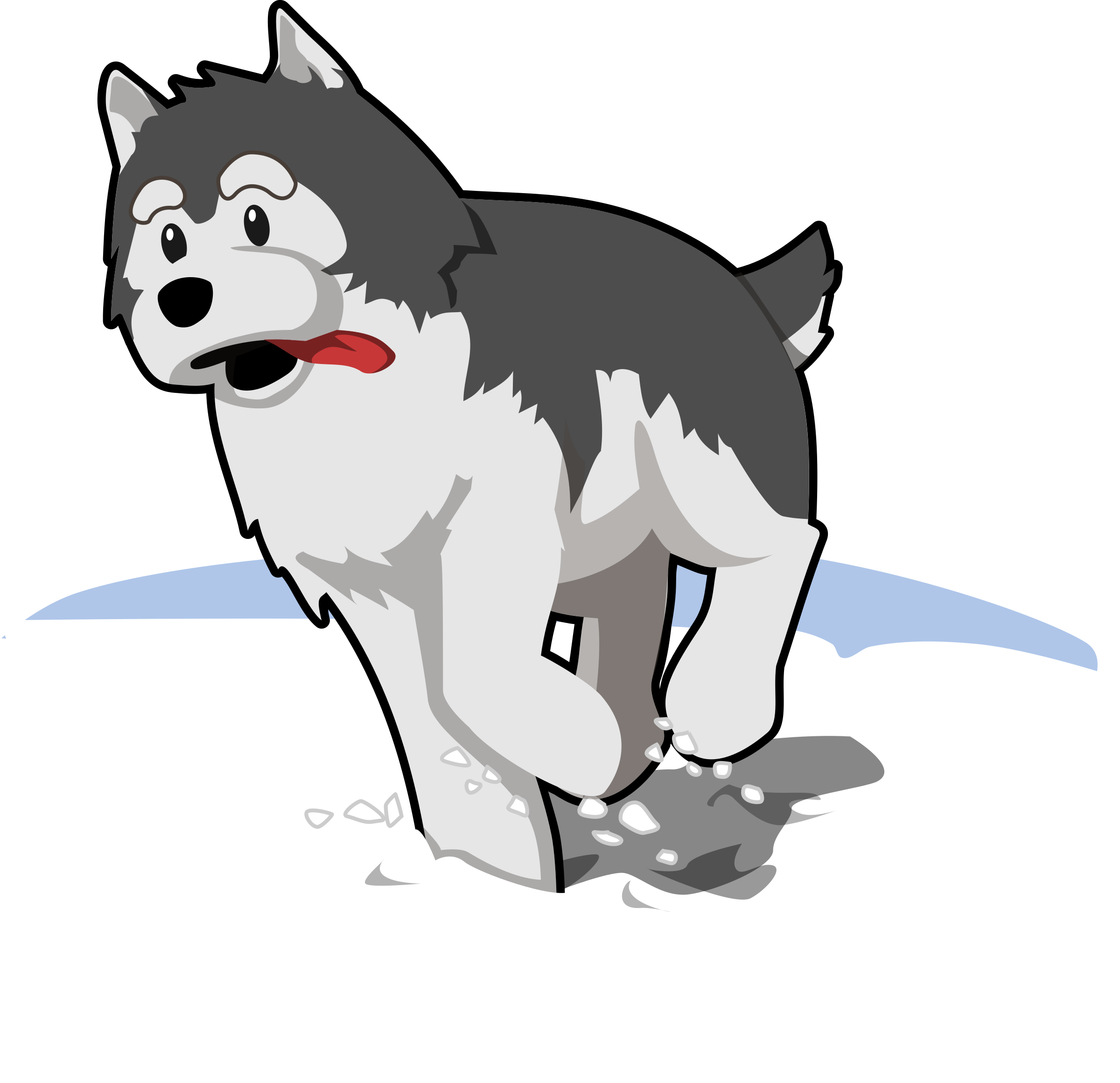 Running in snow big. Husky clipart real puppy