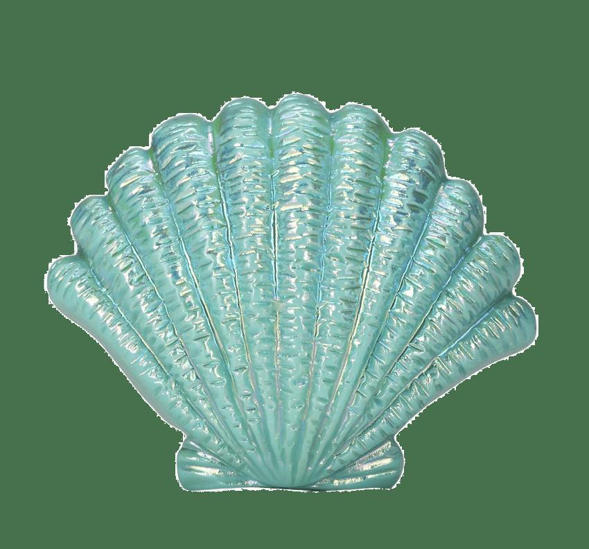 Seashell png free images. Clipart socks blue dress