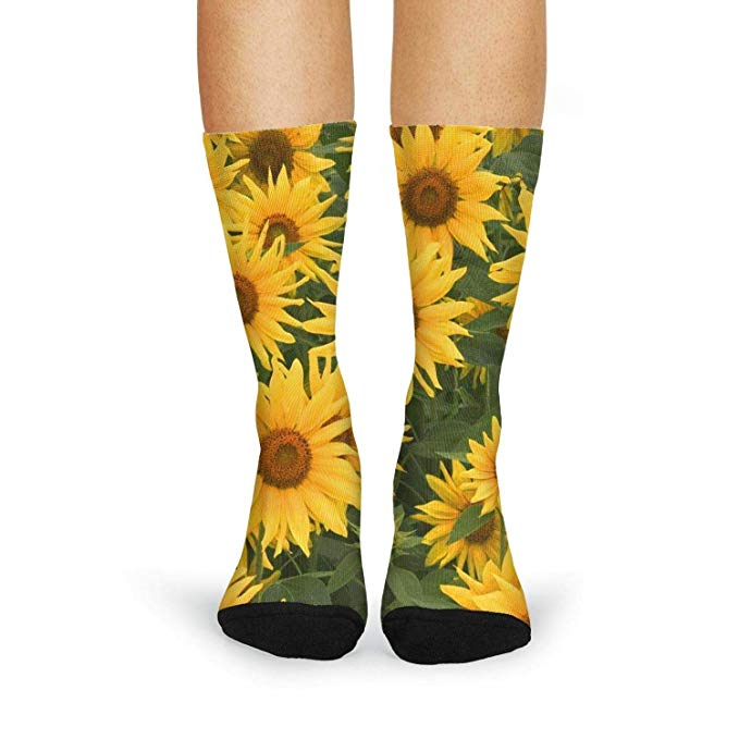 pack graphic sunflowers. Clipart socks mismatched clothing