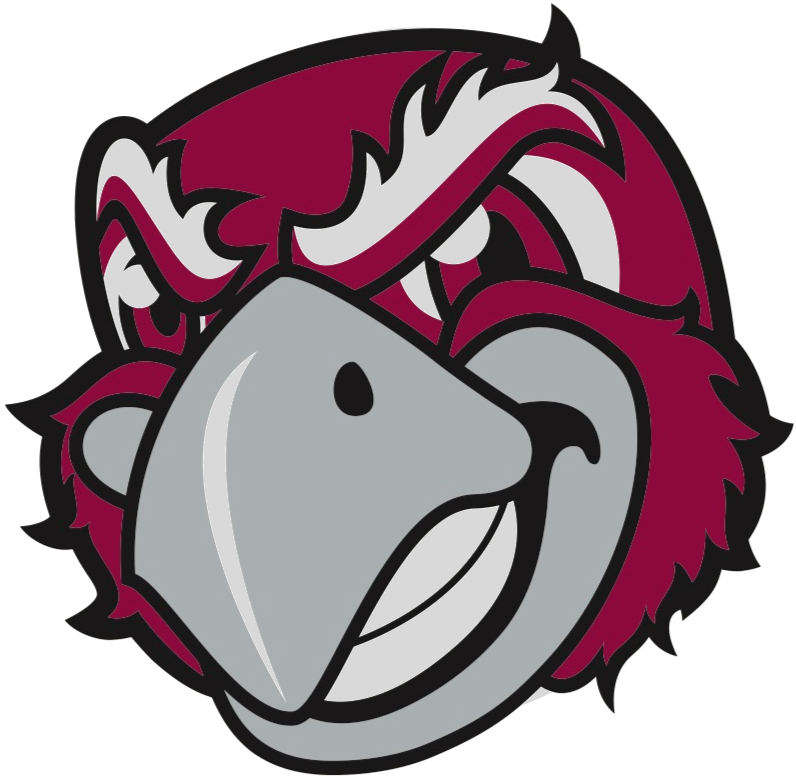 Volleyball clipart intramural sport. Imleagues roanoke college home
