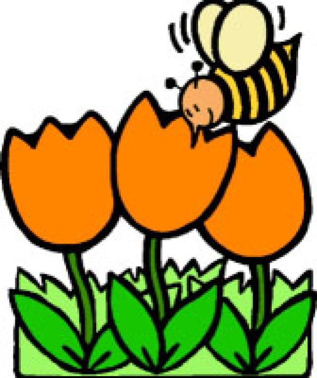 Clipart spring. Clip art free images