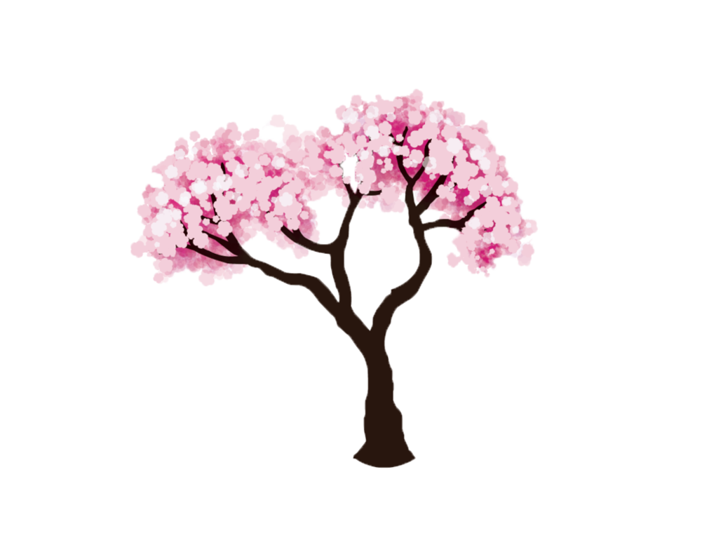 Png cherry by o. Tree clipart pink