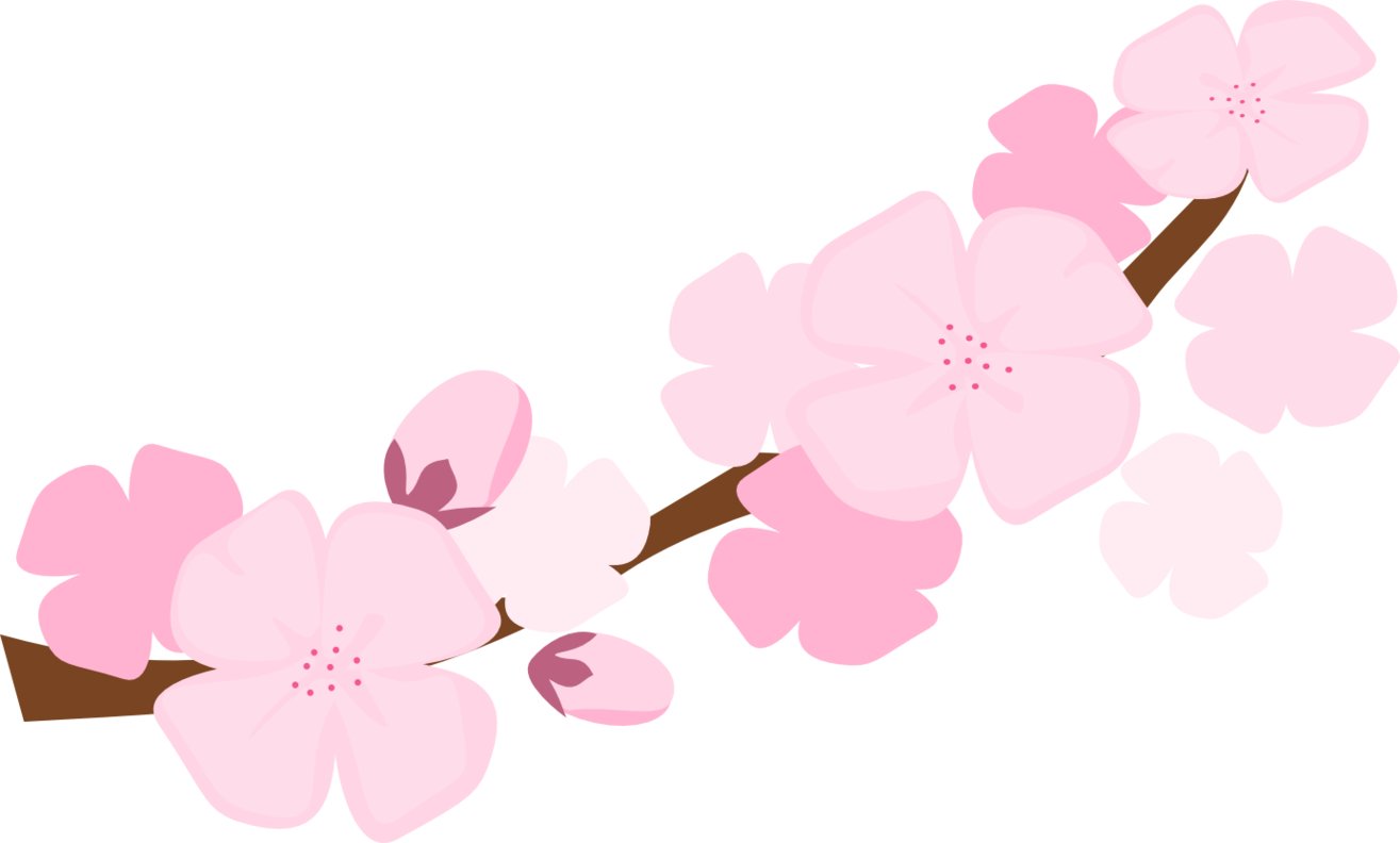 Clipart Spring Cherry Blossom Clipart Spring Cherry Blossom Transparent Free For Download On Webstockreview 2020