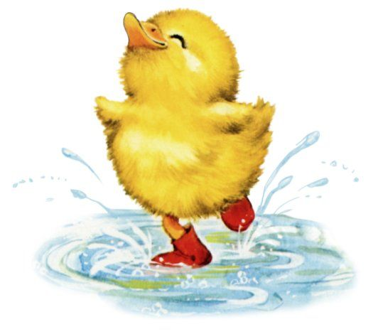 Ducks clipart puddle clipart. Animated duckling splashing in