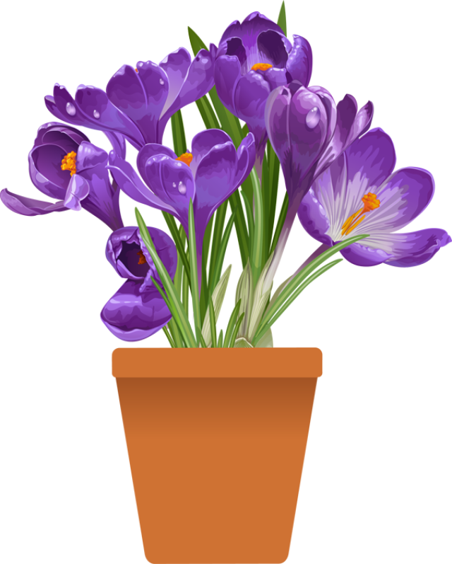 clipart spring plant
