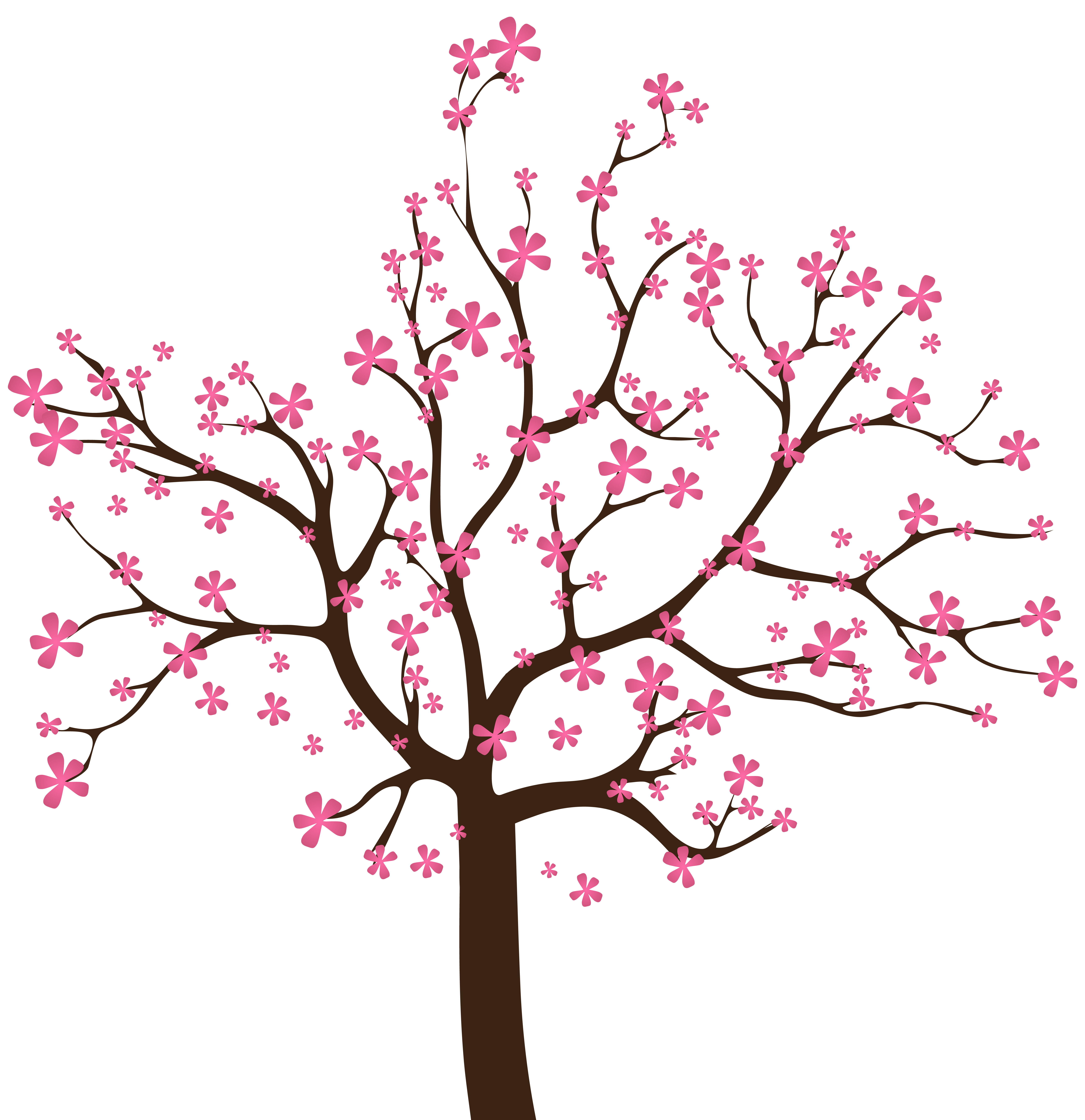 Vines clipart cherry blossom. Spring tree png clip