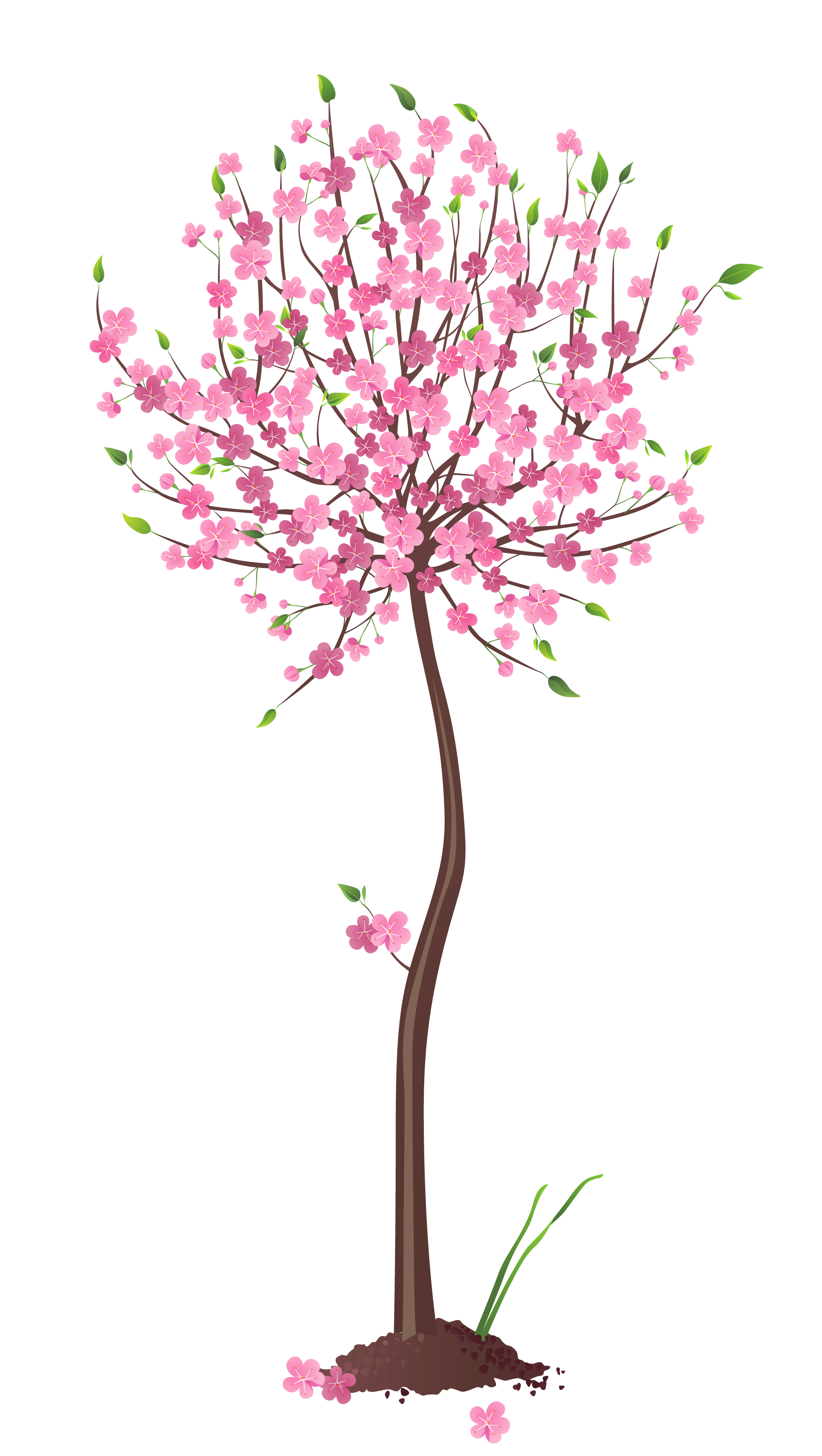 Spring png gallery yopriceville. Tree clipart pink
