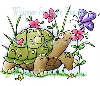 Spring summer rubber stamp. Clipart turtle friend