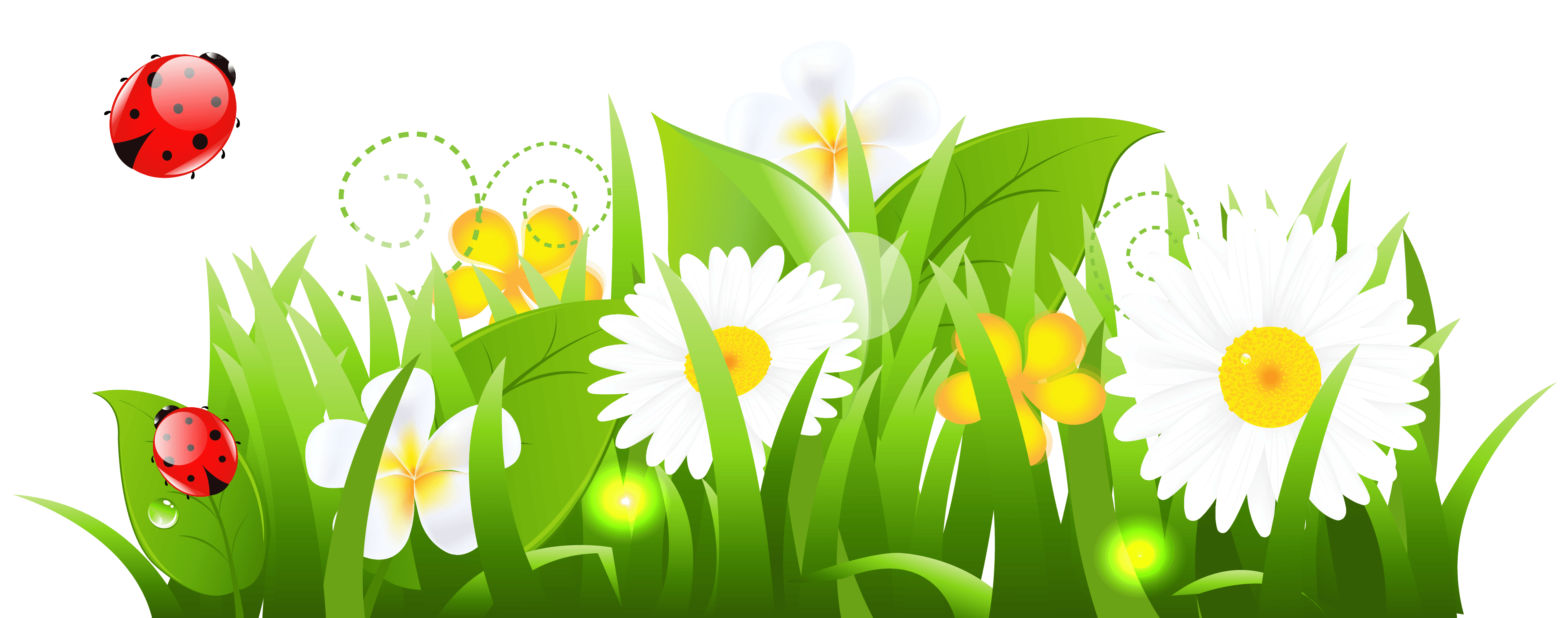 Free flowers in cliparts. Clipart spring wildflower