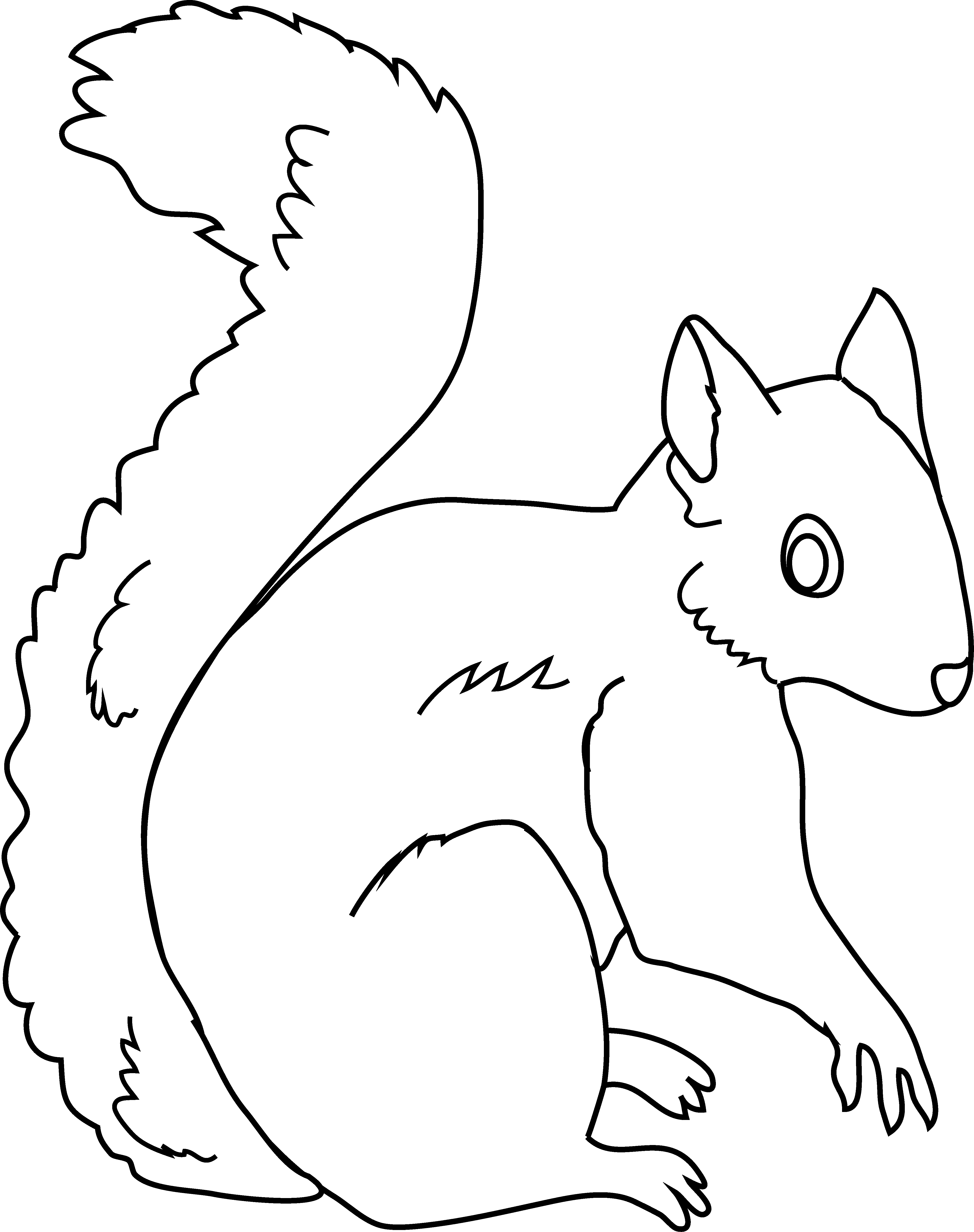 Clipart squirrel color. Coloring page free clip