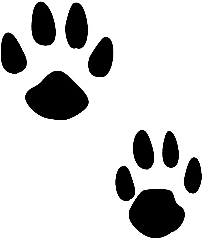 Pawprint clipart four. Animal tracks cliparts free