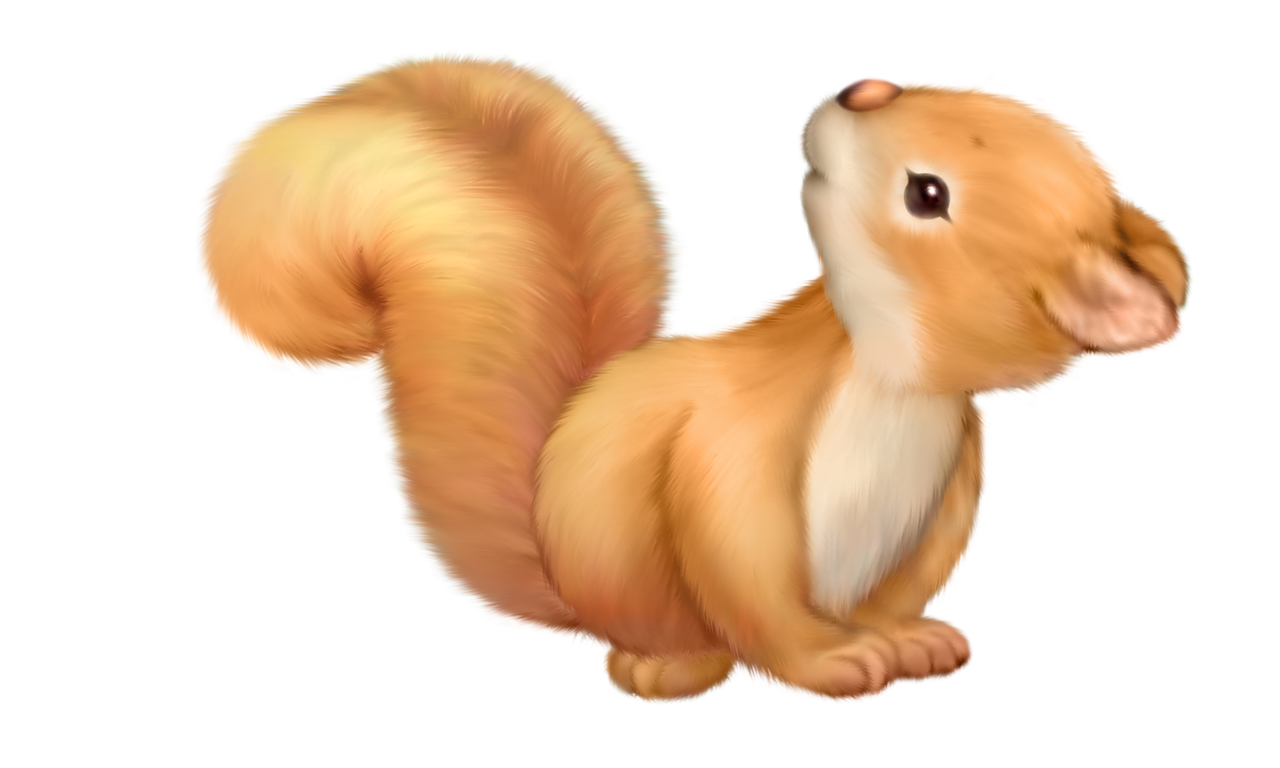 png clip art. House clipart squirrel