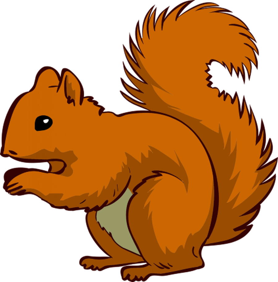 Clipart squirrel nursery. Howe park school class