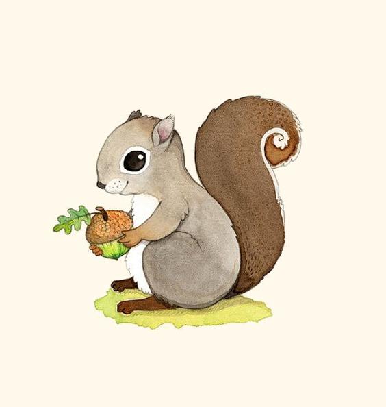 Ecureuils children pinterest kawaii. Woodland clipart watercolor