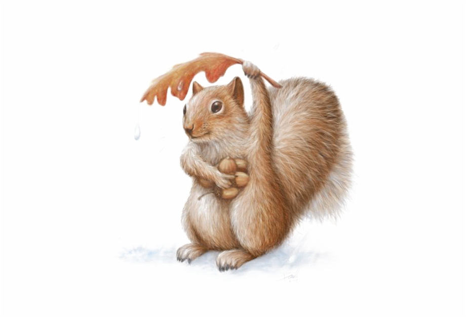 Art watercolor painting paint. Clipart squirrel painted