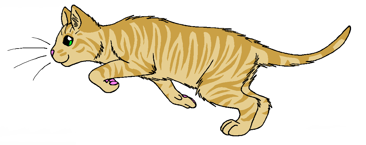 Clipart stars gooseberry. Warrior cat wiki fandom