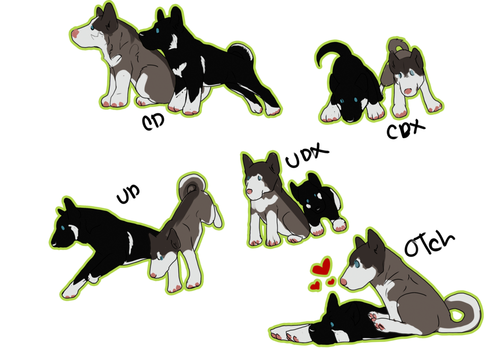 Student clipart obedient. Siberian husky chibi obedience