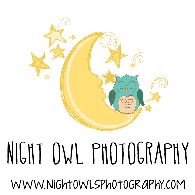 Night owl studio . Photography clipart taken