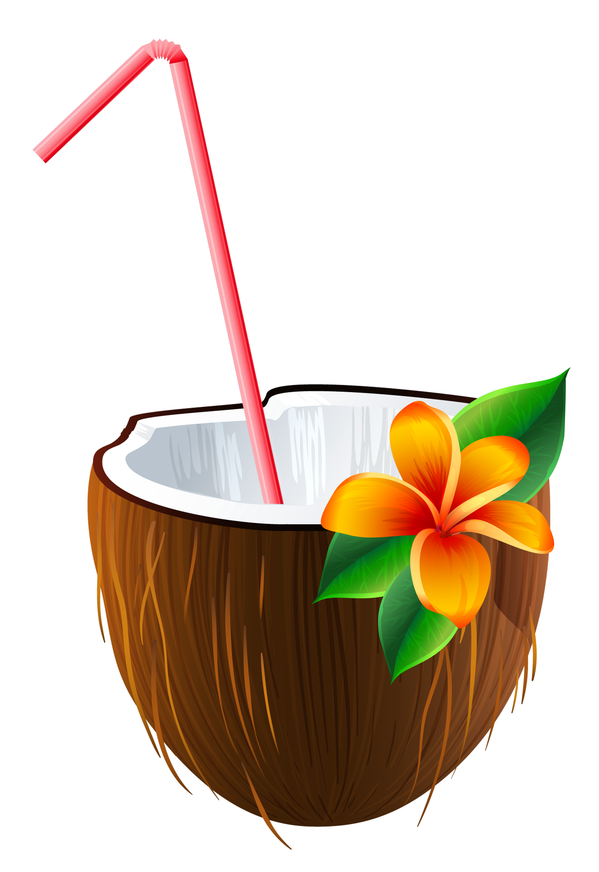 Cocktail clipart coconut. Exotic png image gallery