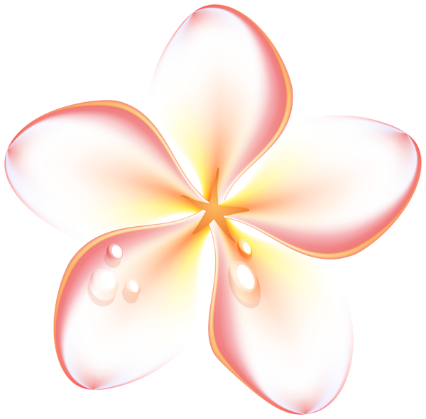 Gallery flowers png . Clipart summer floral