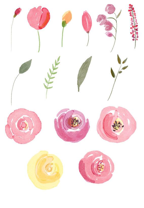 Watercolor roses clip art. Clipart summer floral