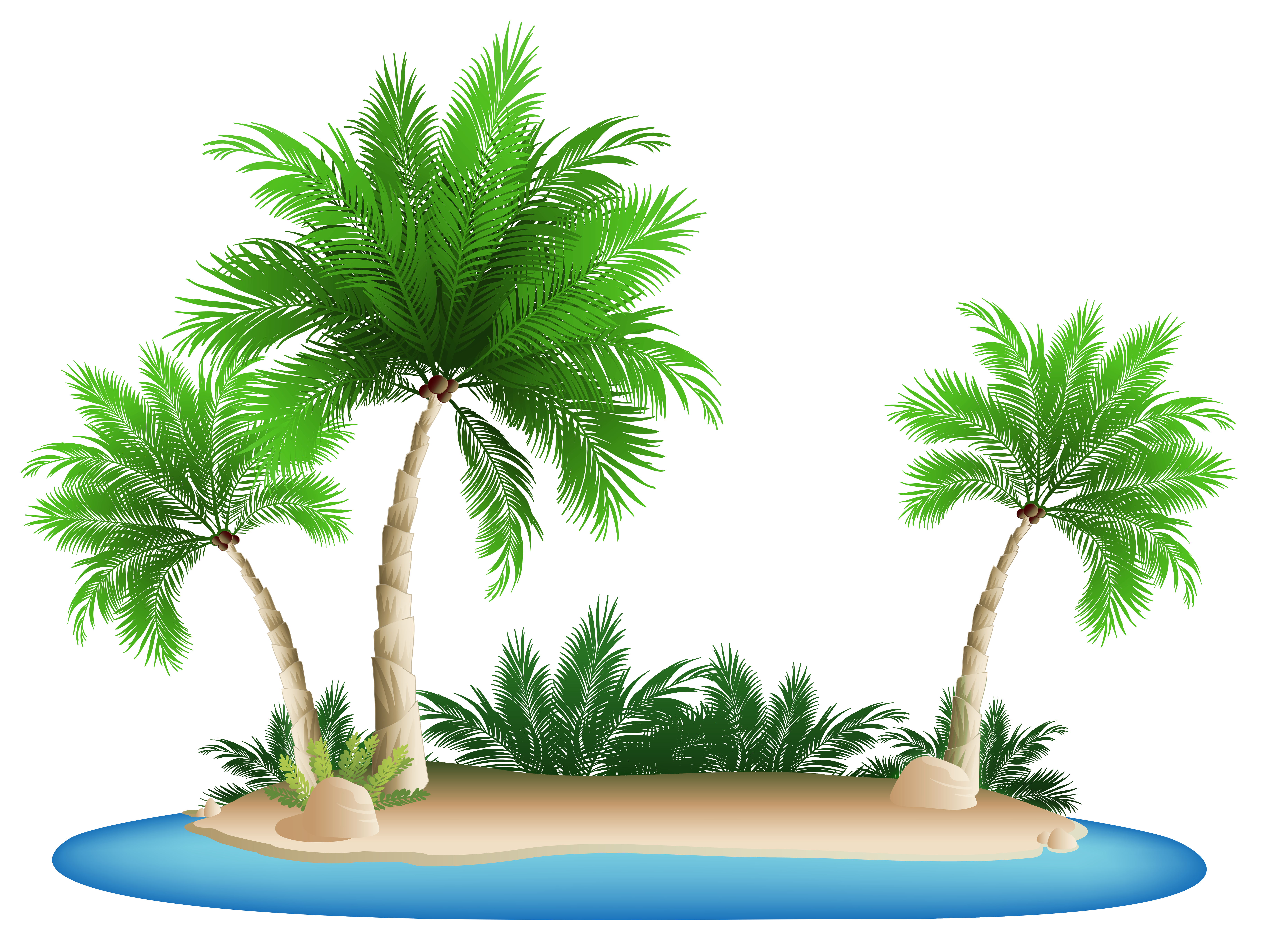 Tree clipart summer. Palm trees island png