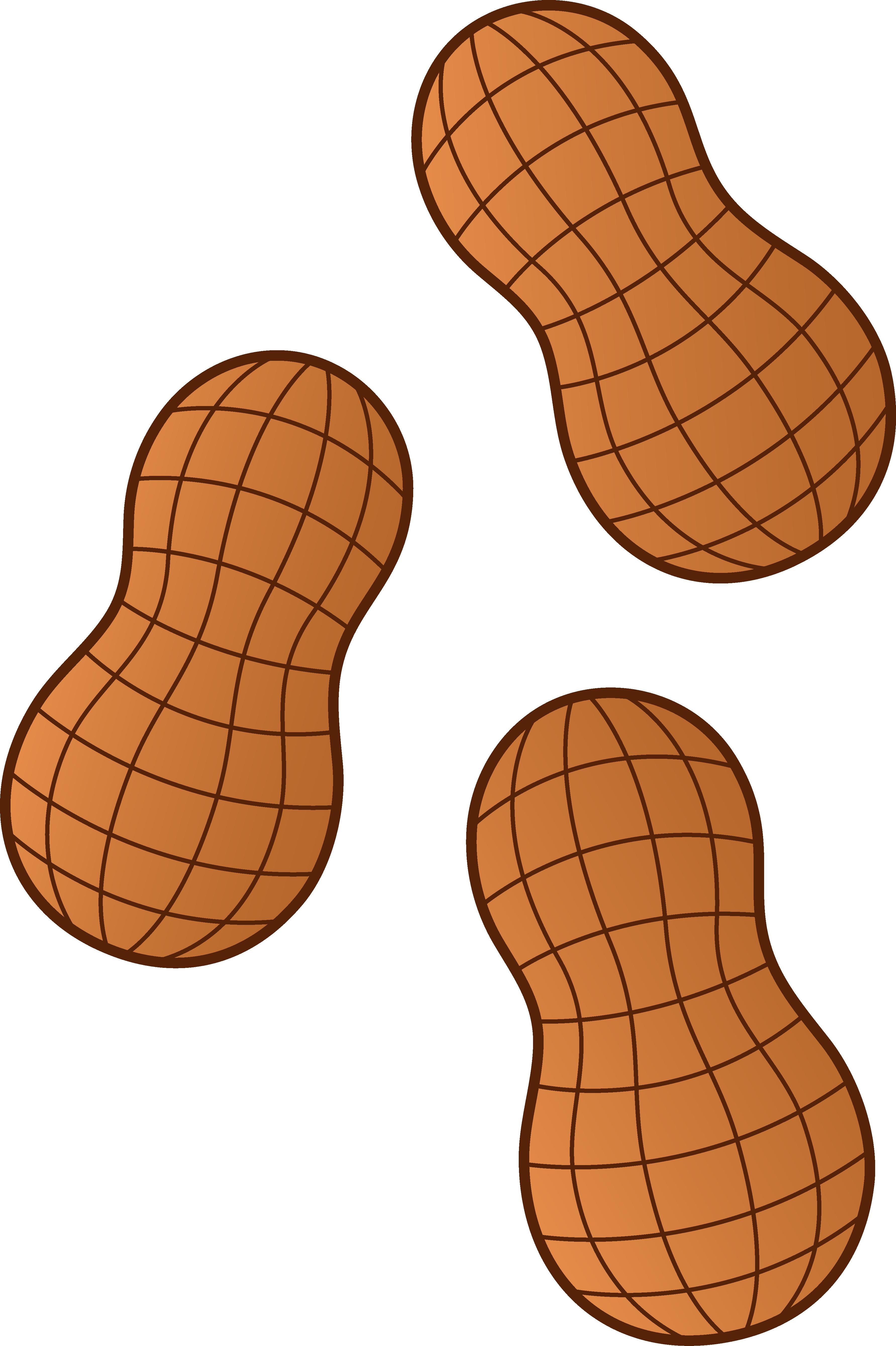 Peanutsy . Peanuts clipart transparent background