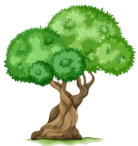 Tree clipart zoo. Png picture pics words
