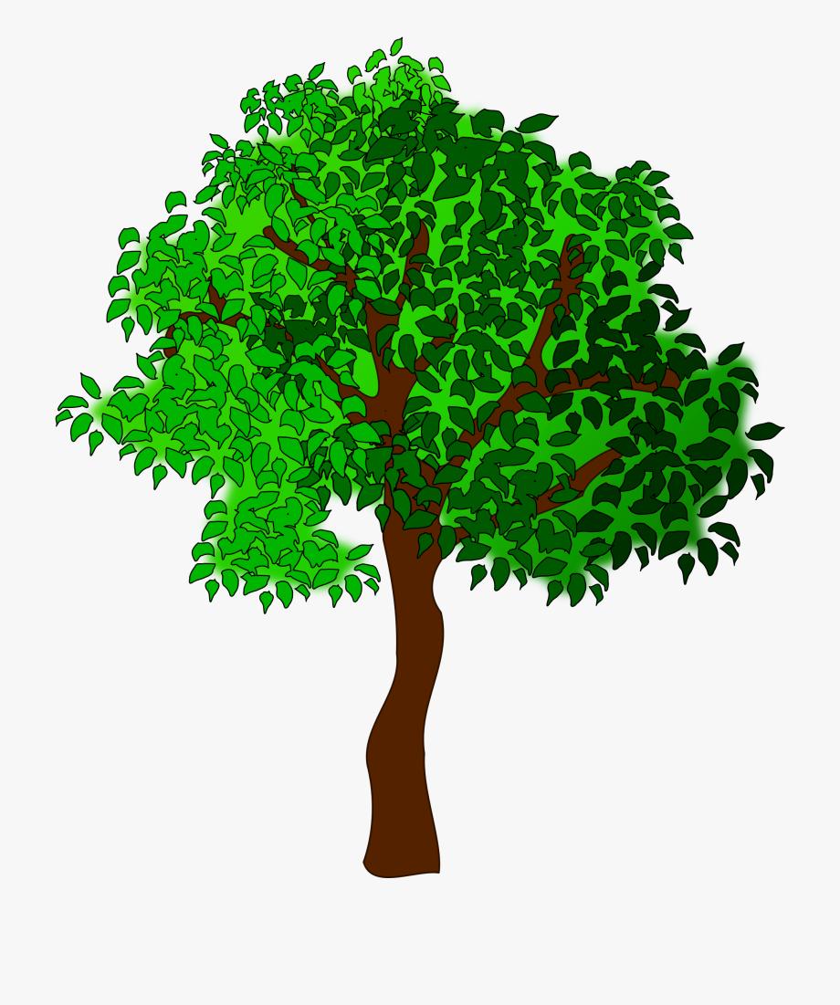 Trees clip art free. Tree clipart summer season